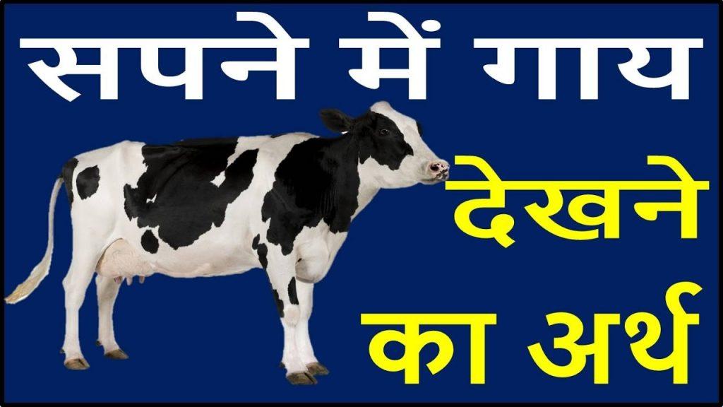 सपने में गाय देखना मतलब क्या होता है