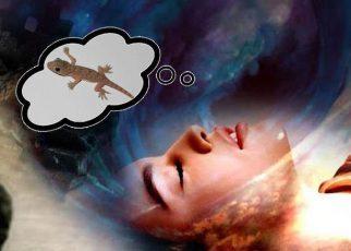 सपने में छिपकली देखना मतलब क्या होता है